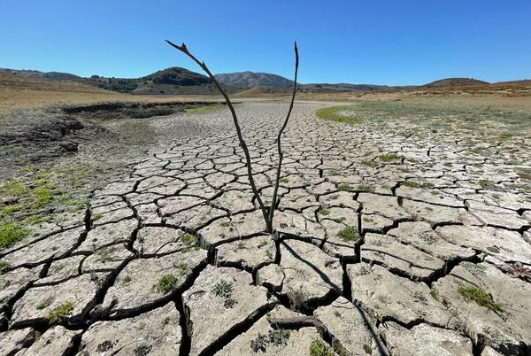 Picture for Drought: Marin, Saudi crown prince eyeing same desalination plants