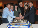 Picture for 'NCIS': Pauley Perrette and Sasha Alexander Left the Show For 2 Very Different Reasons