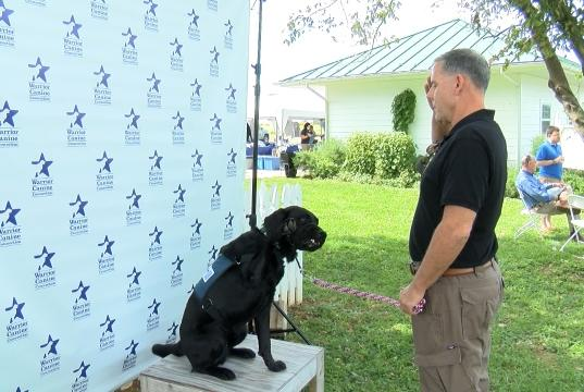 Picture for Local organization trains service dogs to assist recovering veterans