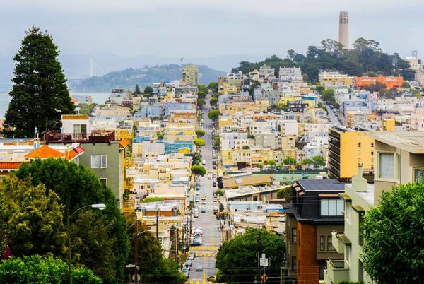 Picture for How San Francisco neighborhoods voted in the Newsom recall