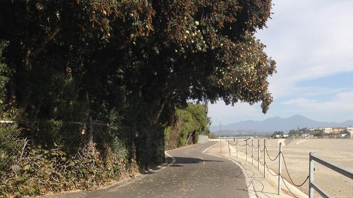 Cover for One Dead, Two Children Injured in E-bike Crash on San Juan Creek Trail