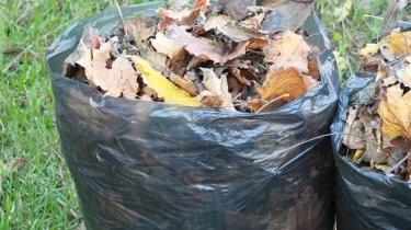 Picture for City council urges yard trimmings to be allowed in plastic bags as trash collection woes continue