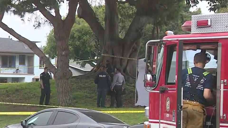 Picture for Drive-By Shooting Possibly Linked To Fatal Crash In Venice