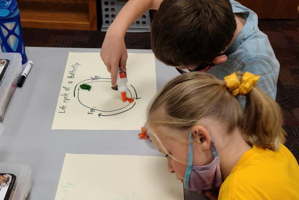 Picture for Otoe County students study butterfly life cycle through Nebraska Extension