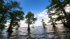 Cover for Tennessee State Parks Named Finalist for National Gold Medal Award