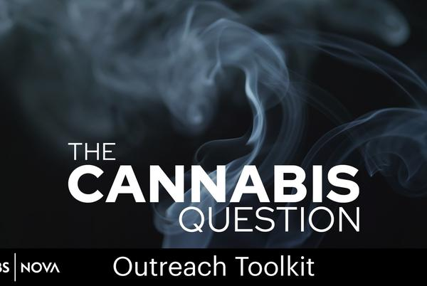 Picture for The Cannabis Question Outreach Toolkit and Community Events