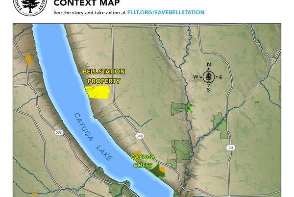 Picture for Bell Station: Auction for Largest Section of Privately Owned Lakefront Land Canceled