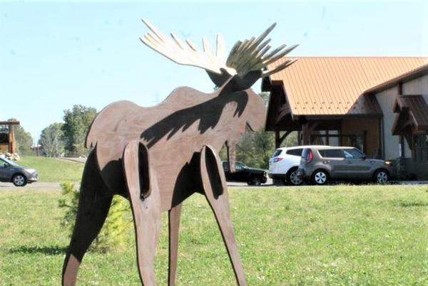 Picture for Holmes County business's moose mascot beheaded by a chain saw; reward offered