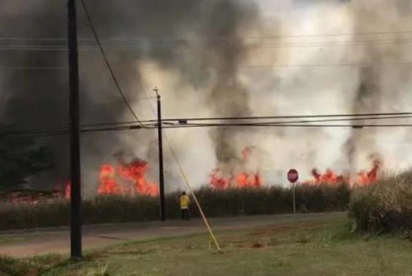 Picture for Kamehameha Highway reopened in Wahiawa as crews contain large brush fire