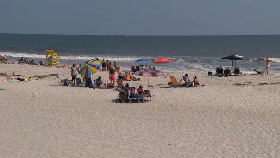 Picture for Town of Hempstead closes beaches after sharks spotted