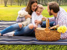 Picture for Best picnic blanket