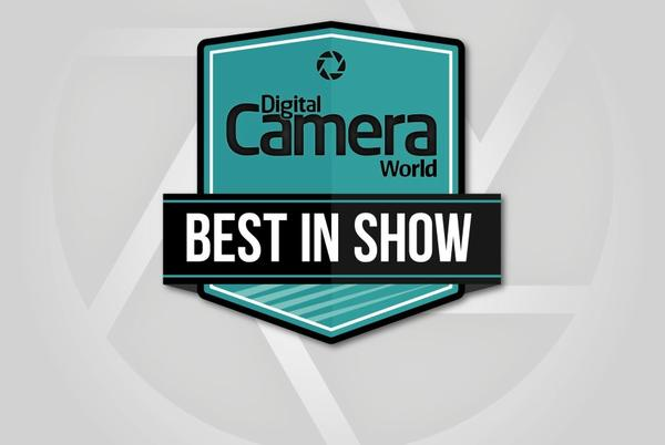 Picture for The Photography Show 2021: Best in Show award winners