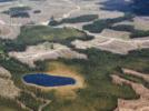 Picture for Paper Excellence Expansion Shows Threats to Canada's Forests