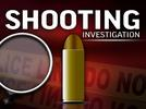 Picture for Deputies responded to a shooting at a nightclub in Greenwood Co. says GCSO