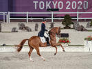 Picture for Tokyo 2020 Day Two Dressage Highlights
