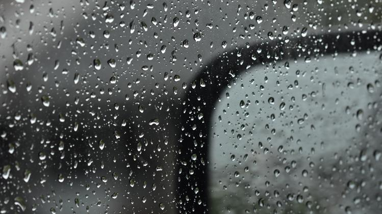 Picture for Tuesday rain in Pelham: Ideas to make the most of it