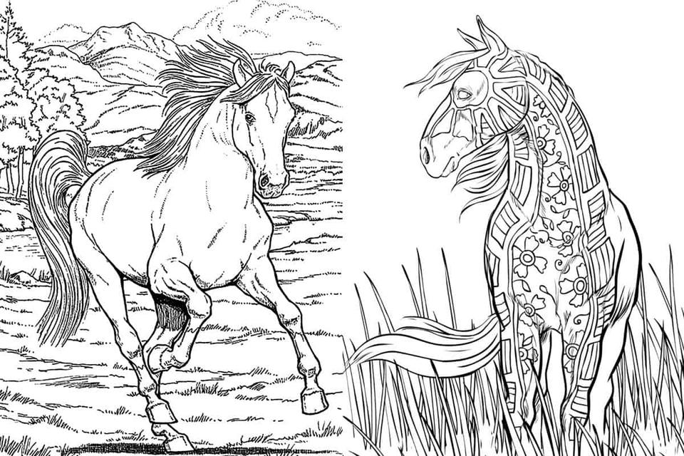 - Free Horse Coloring Pages For Adults & Kids News Break