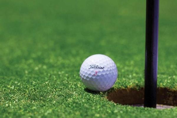 Picture for Laurel boys, girls sweep Eastern A divisional golf titles in Sidney