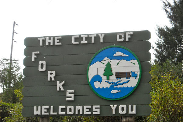 Picture for Meet the 2021 Forks City Council candidates