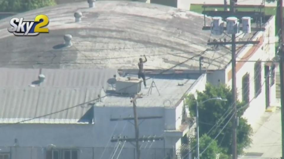 Picture for Robbery Suspect Holes Up On Rooftop Before Being Arrested