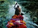 Picture for Magnum Photographer Steve McCurry on The Importance of Being Curious