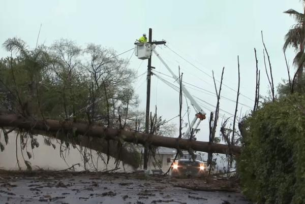 Picture for Downed Trees, Flooded Roads, Soggy Infields: See the Damage From Friday's Storm