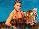 Picture for Larsa Pippen's visit to Doc Antle zoo prompts PETA to take action