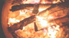 Cover for Stage I fire restrictions go into effect Wednesday for San Juan National Forest