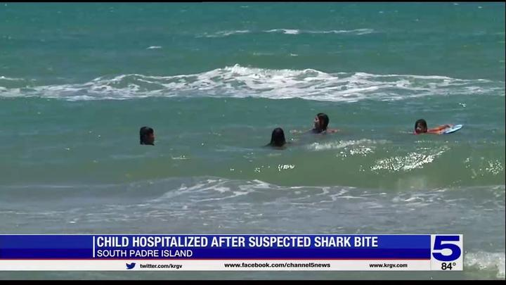 Cover for Child hospitalized after suspected shark bite on South Padres Island
