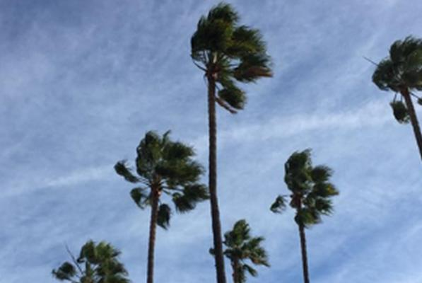 Picture for Sunny and Windy Weather Will Keep Fire Officials Wary Monday
