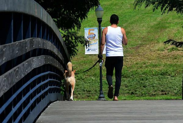 Picture for Norwalk considers adding dog parks throughout city