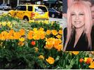 Picture for Broadway Mall Gala to Include Appearance by Cyndi Lauper