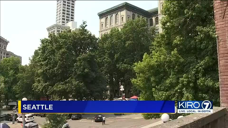 Picture for King County sheriff sends staff home over safety concerns at courthouse