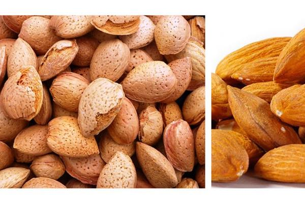 Picture for Different Types Of Almonds With A Guide To Division Update 10/2021