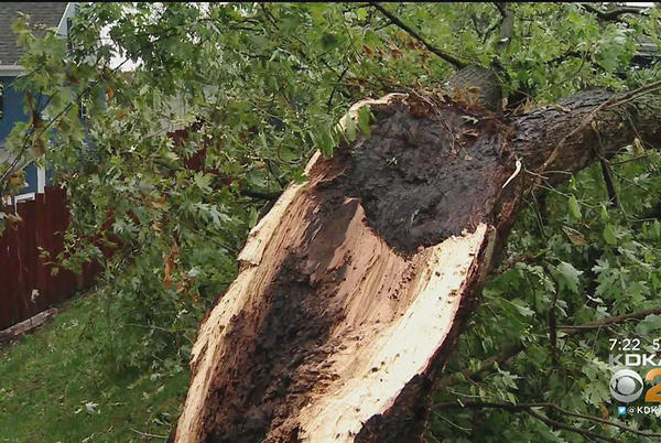 Picture for 'We Got Banged Bad:' Freedom Hit Hard During Saturday Morning's Storms