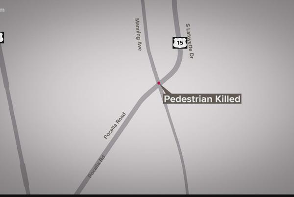 Picture for Pedestrian dead after being struck by Sumter County deputy