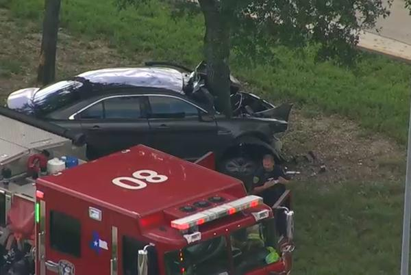 Picture for Driver killed after car crashes into tree in southwest Houston, HPD says