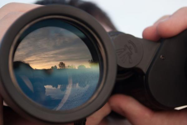 Picture for Nikon binoculars: The best deals and discounts