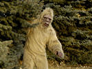 Picture for Lady Bigfoot Crashes Child's Birthday Party – Chaos Erupts