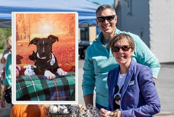 Picture for Fairhaven Animal Advocate Creates Initiative to Help Local Animal Shelter
