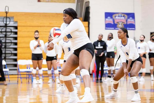 Picture for Dillard Volleyball Returns to The Court With 3-1 Victory Over Louisiana College on Friday