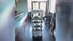 Cover for Facing Labor Shortage, Stockton Robot Uses Robot To Help Serve