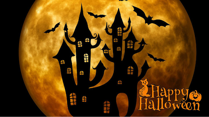 Cover for Five Spooky Things To Do In Tampa This Halloween