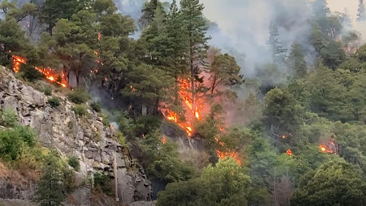 Picture for Dixie Fire Update: Wildfire Grows To 142,940 Acres; Major Spot Fire Threatens Twain