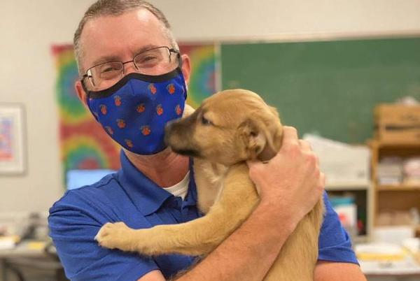 Picture for Metro East Humane Society Holds Puppy-Teacher Playdates With District #7 Faculty