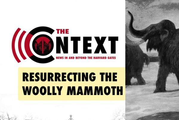 Picture for The Context: Resurrecting the Woolly Mammoth