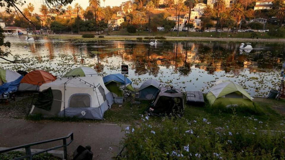 Picture for Dangerous levels of E. coli found in Echo Park Lake with no warning to public
