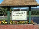 Picture for Copake officials disappointed following Hecate Energy meeting