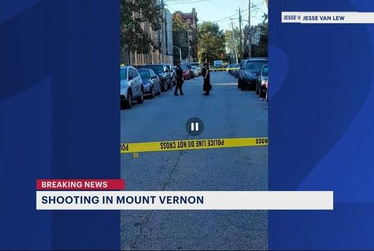Picture for Authorities: 20-year-old woman shot in Mount Vernon