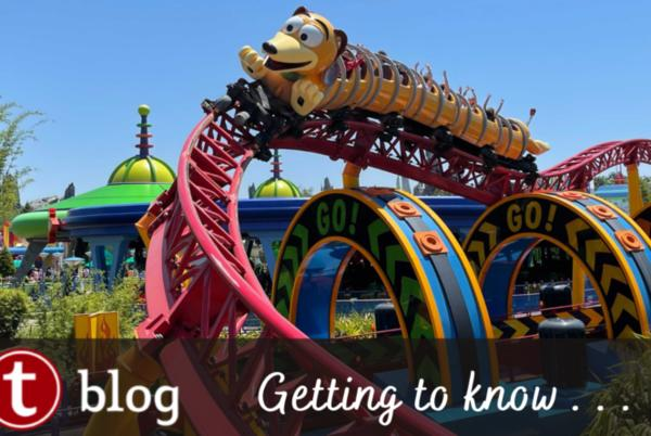Picture for Planning Basics: What is Included with My Disney World Park Ticket?